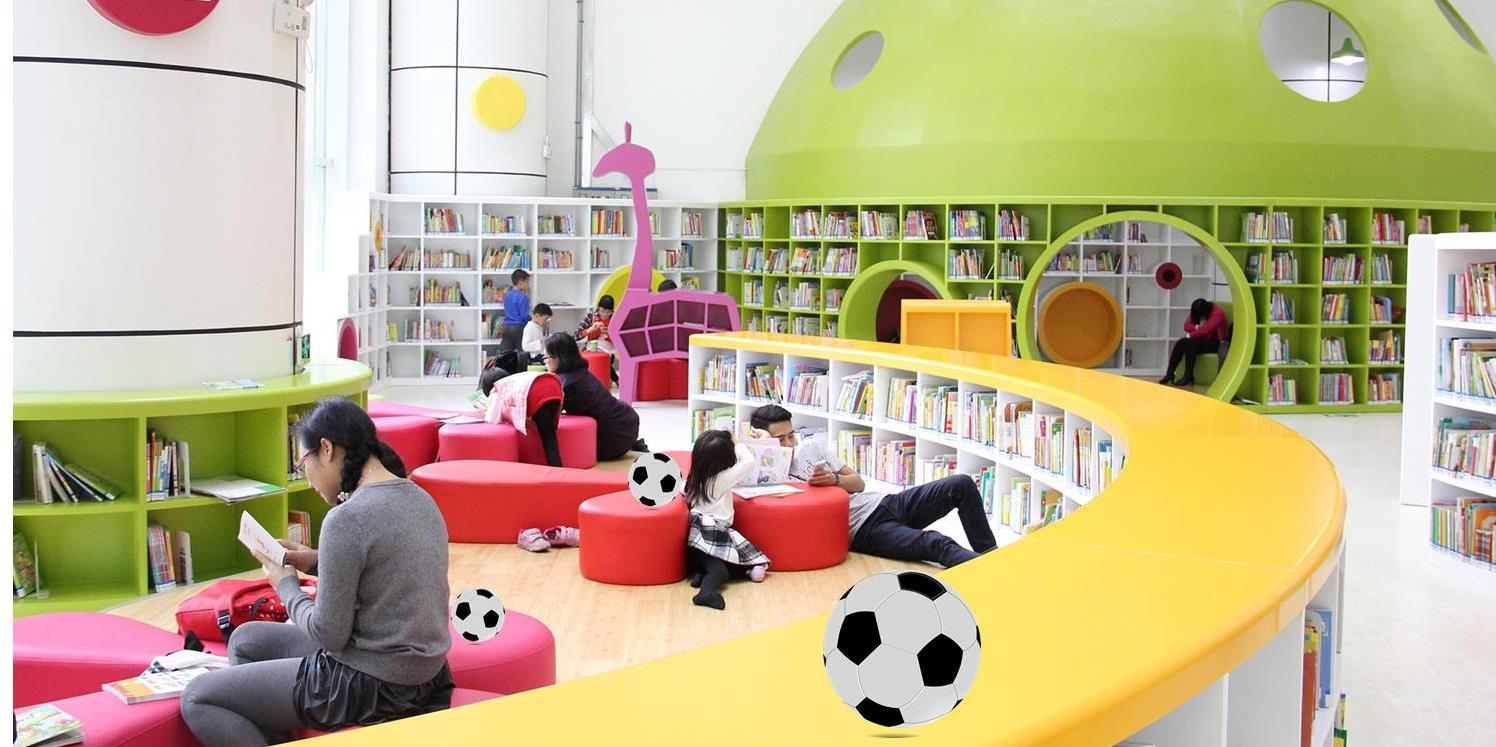 Biblioteca pelota